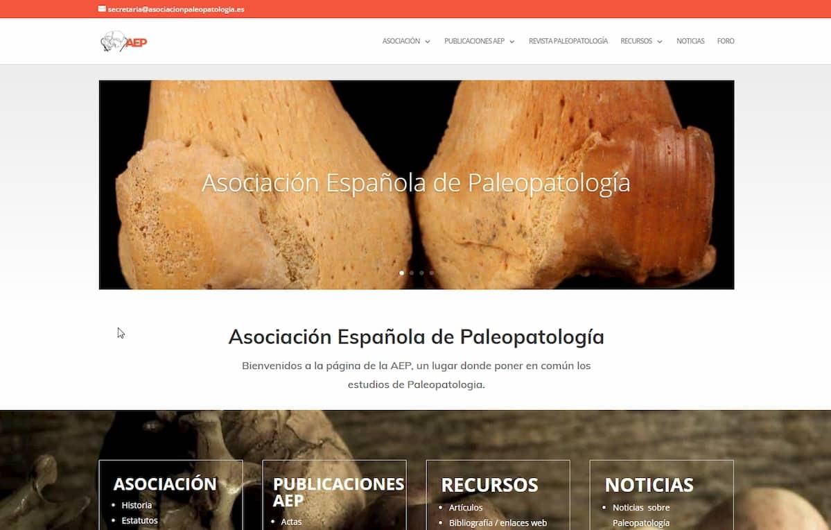 Web de la AEP